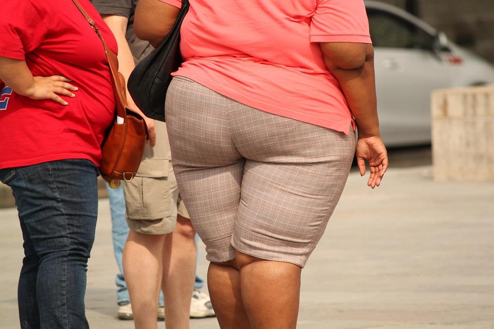 Übergewicht und Darmflora